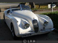 JAGUAR XK 120 (Photo 2)