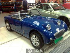 AUSTIN HEALEY Frogeye (Photo 1)