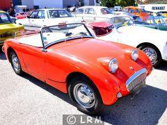 AUSTIN HEALEY MKI Sprite Frogeye (Photo 1)