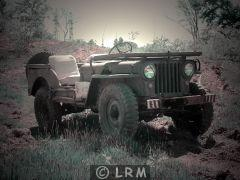 WILLYS OVERLAND MC M38 (Photo 1)